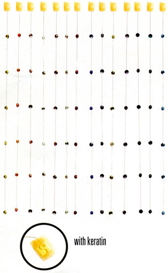 Extensions mit farben